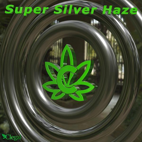 fleurs cbd super silver haze