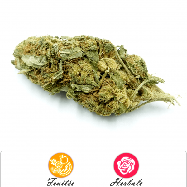 Fleur Orange Bud CBD